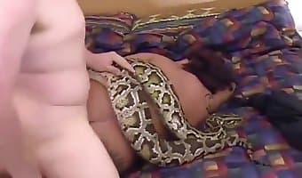 man fucks a snake in an animal sex video
