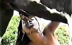 sex with animals